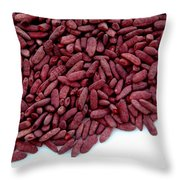 Red Yeast Rice Throw Pillow