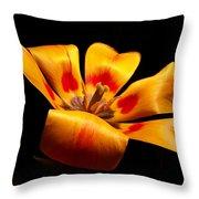 Red-yellow Tulip 1 Throw Pillow