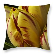 Red Yellow Tulip Throw Pillow