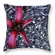 Red Zen Throw Pillow