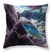Redband Fan Throw Pillow