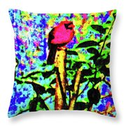 Redbird Dreaming About Why Love Is Always Important Throw Pillow
