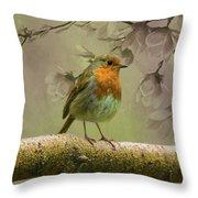 Redbreast Bird Throw Pillow