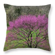 Redbud And Field In Jefferson County Throw Pillow