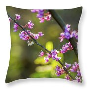 Redbud Bloom  Throw Pillow