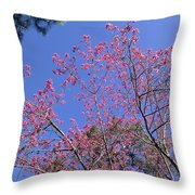 Redbud In Bloom Throw Pillow