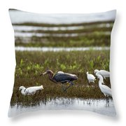 Reddish Egret Throw Pillow
