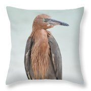 Reddish Egret Stands Tall Throw Pillow