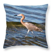 Reddish Egret Wild 2 By Darrell Hutto Throw Pillow