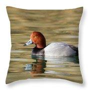 Redhead On Sunny Pond Throw Pillow