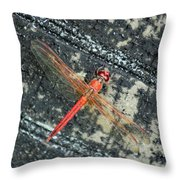 Redhead Throw Pillow