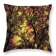 Rediscovering The Light In The Ordinary Throw Pillow