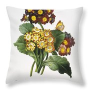 Redoute: Auricula, 1833 Throw Pillow