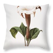 Redoute: Datura, 1833 Throw Pillow