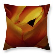 Reds And Oranges Throw Pillow