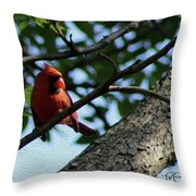 Red's Ray Of Light Throw Pillow