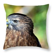Redtail Throw Pillow by Marty Koch