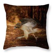 Redtail Morning Run Hawk Art Throw Pillow