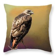 Redtail Portrait Throw Pillow