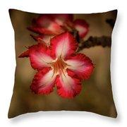 Redwhite Flower Throw Pillow