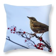 Redwing  - 2 Throw Pillow