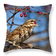Redwing With Berry Throw Pillow