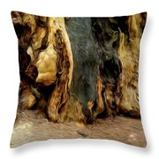 Redwood Abstract Throw Pillow
