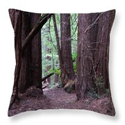 Redwood Grove Throw Pillow