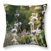 Redwood Meadow Light 2 Throw Pillow