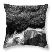Redwood Rushing Stream 2  Throw Pillow