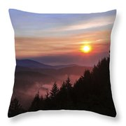 Redwood Sun Throw Pillow by Chad Dutson