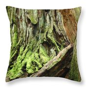 Redwood Trees Art Prints Baslee Troutman Throw Pillow