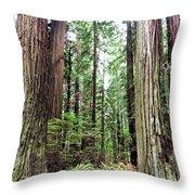 Redwood5 Throw Pillow