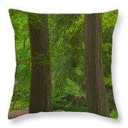 Redwoods #2 Throw Pillow
