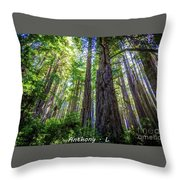Redwoods National Forrest Trees Of Mistery Throw Pillow