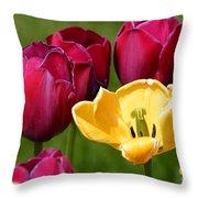 Redyellowtulips6722 Throw Pillow