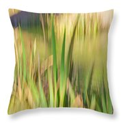 Reed Abstract II Throw Pillow