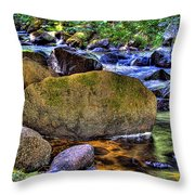Reeder Creek From Under The Bridge Throw Pillow