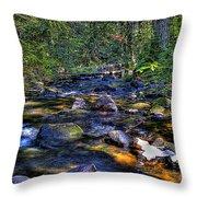 Reeder Creek II Throw Pillow