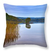 Reeds And An Islet In Lough Macnean Throw Pillow