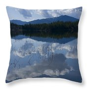 Reeds And Reflection Throw Pillow