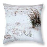 Reeds And Snow Throw Pillow