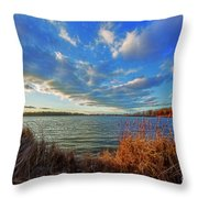Reeds And Wind Throw Pillow