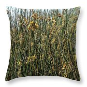 Reeds II Throw Pillow
