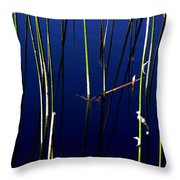 Reeds Of Reflection Throw Pillow