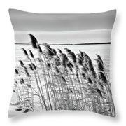 Reeds On A Frozen Lake Throw Pillow