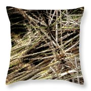 Reeds Reflected Throw Pillow