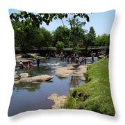 Reedy River Throw Pillow