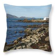 Reef Bay Boathouse Throw Pillow