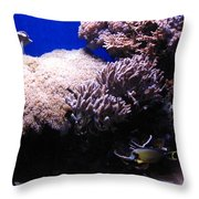 Reef Tank Throw Pillow